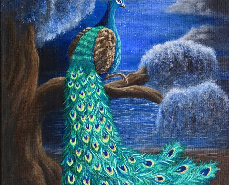 ' Peacock in moonlight ' acrylic 30x40cm Sold!